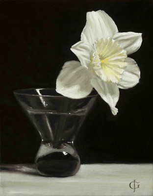 Daffodil in a Funnel Glass